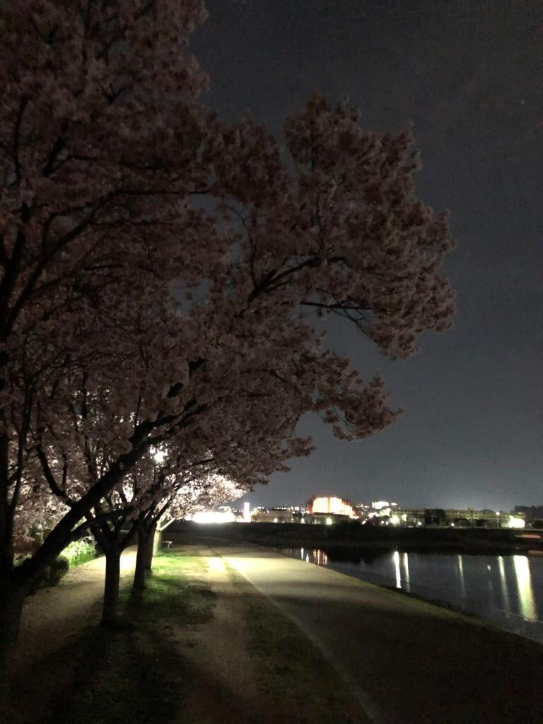 狭山池と浦之庄方面の夜景